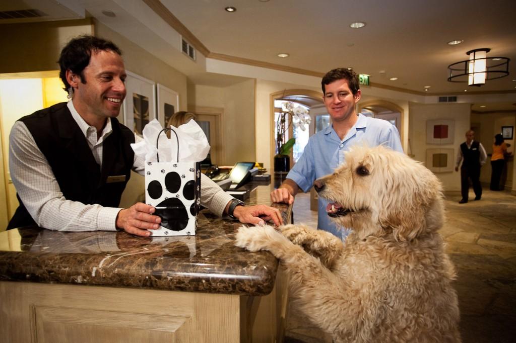 nell pet amenities