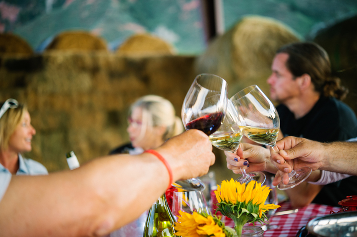 Farm to Table Dinner with Wine