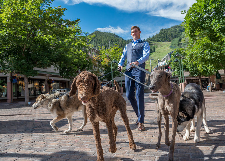 dog friendly hotels in Aspen - The Little Nell